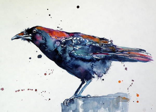 Wall Art - Painting - Crow In The Garden II  by Kovacs Anna Brigitta