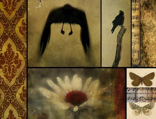 Wall Art - Photograph - Crows And Butterflies by Gothicrow Images