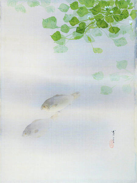 Wall Art - Painting - Crucian Carp - Digital Remastered Edition by Watanabe Seitei