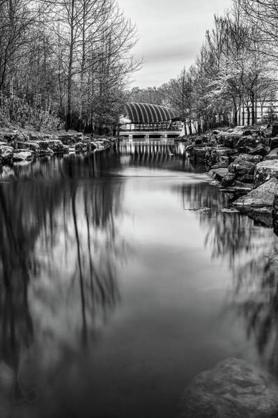 Photograph - Crystal Bridges Museum River Trail - Monochrome by Gregory Ballos