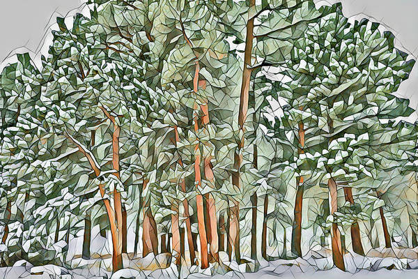 First Snowfall Wall Art - Photograph - Cubist Trees 2 by Eric Glaser
