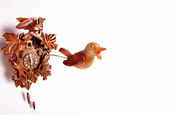 Kitsch Photograph - Cuckoo Coming Out Of Cuckoo Clock With by Peter Dazeley