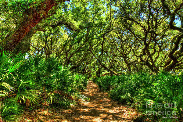 Wall Art - Photograph - Cumberland Island Sea Camp Path To The Sea Cumberland Island National Seashore Georgia Seascape Art by Reid Callaway