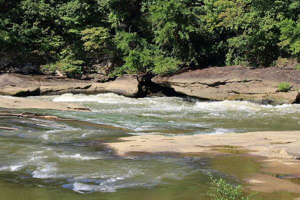 Photograph - Cumberland River by Angela Murdock