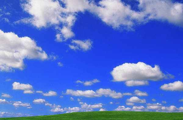 Wall Art - Photograph - Cumulus Clouds In Blue Sky Above Lush by Eastcott Momatiuk