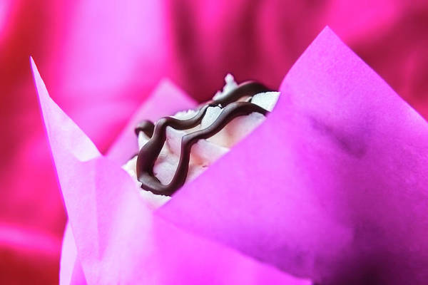 Photograph - Cupcake With Chocolate Drizzle And Pink Wrapper by Jeanette Fellows