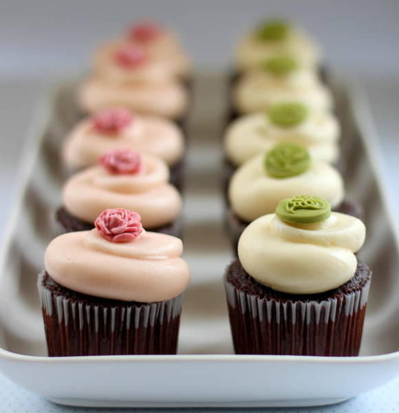 Tray Photograph - Cupcakes In Line In Tray by Simple & Elegant