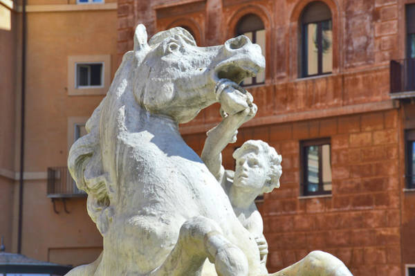 Photograph - Cupid And His Stallion by JAMART Photography