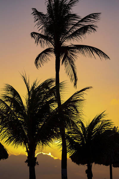 Wall Art - Photograph - Curacao Sunset by Adam Romanowicz