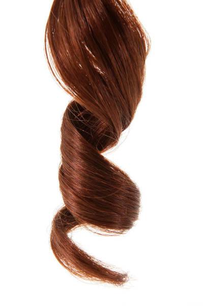 Hair Cuts Wall Art - Photograph - Curly Hair, Close-up Of Ringlet by Thomas Northcut