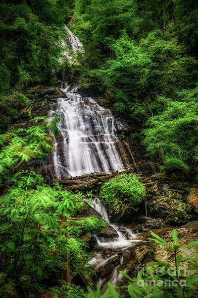 Photograph - Curtis Creek Falls by Nick Zelinsky