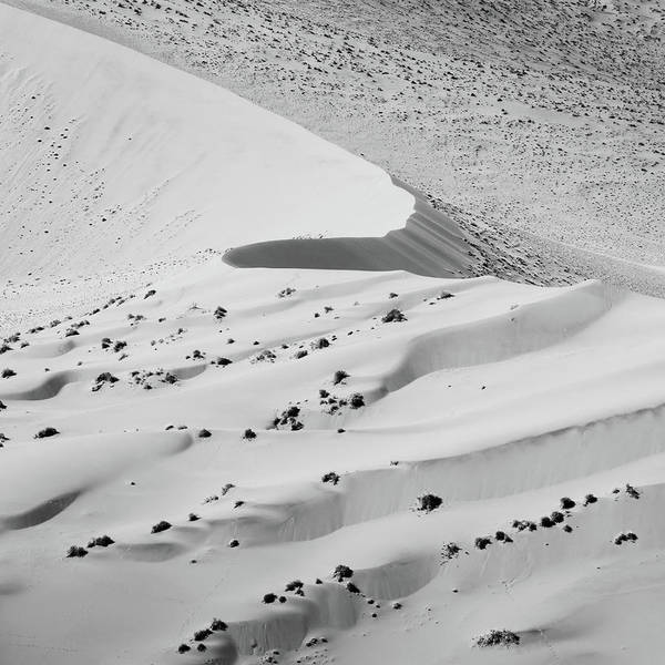 Photograph - Curve by Dalibor Hanzal