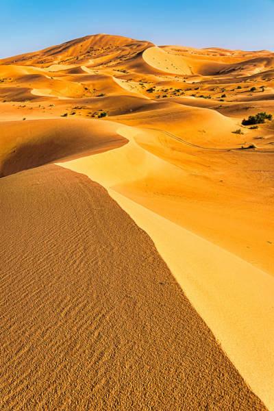 Photograph - Curving Sand Dune Ridges - Morocco by Stuart Litoff