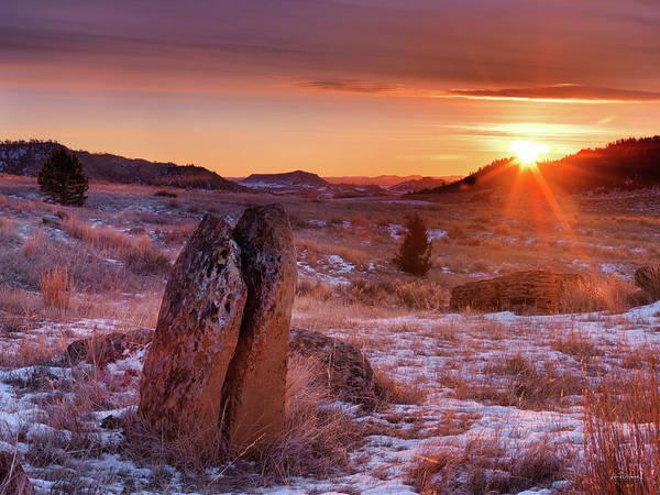 Photograph - Custer Natonal Forest Winter by Leland D Howard