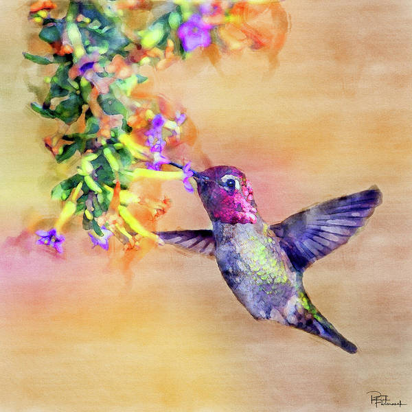 Photograph - Cute As A Button In Digital Watercolor by Rick Furmanek