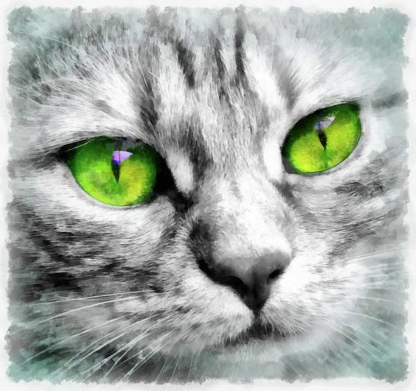 Painting - Cute Cat Portrait Watercolor by Matthias Hauser