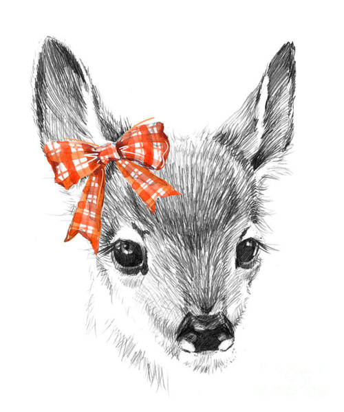 Wall Art - Digital Art - Cute Deer. Pencil Sketch Of Fawn by Faenkova Elena
