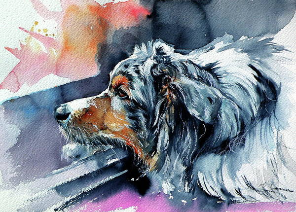Wall Art - Painting - Cute Dog II by Kovacs Anna Brigitta