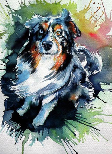 Wall Art - Painting - Cute Dog IIi by Kovacs Anna Brigitta