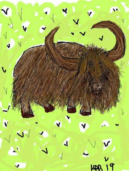 Yak Drawing - Cute Domestic Yak by Kathy Barney