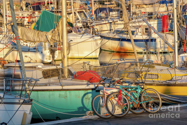 Wall Art - Photograph - Cycling And Sailing by Delphimages Photo Creations