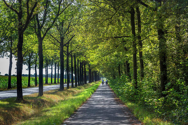 Photograph - Cycling In Holland by Debra and Dave Vanderlaan