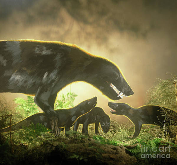 Photograph - Cynognathus With Young by Warren Photographic
