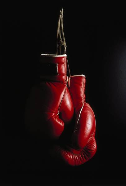 Equipment Photograph - D322 Hanging Boxing Gloves by Ernie Friedlander