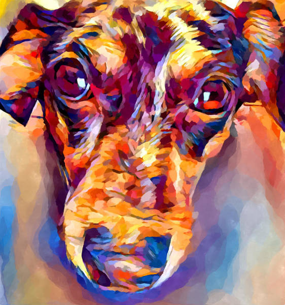 Wall Art - Painting - Dachshund 4 by Chris Butler