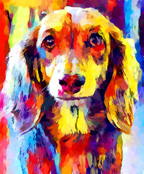 Wall Art - Painting - Dachshund 5 by Chris Butler