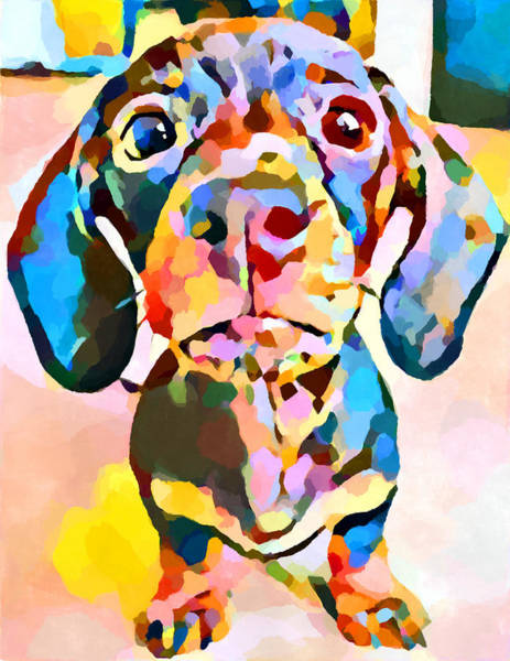 Wall Art - Painting - Dachshund 7 by Chris Butler
