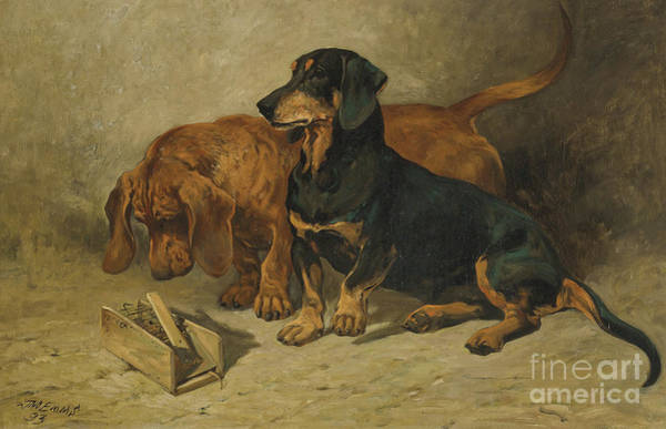 Wall Art - Painting - Dachshunds, 1893 by John Emms