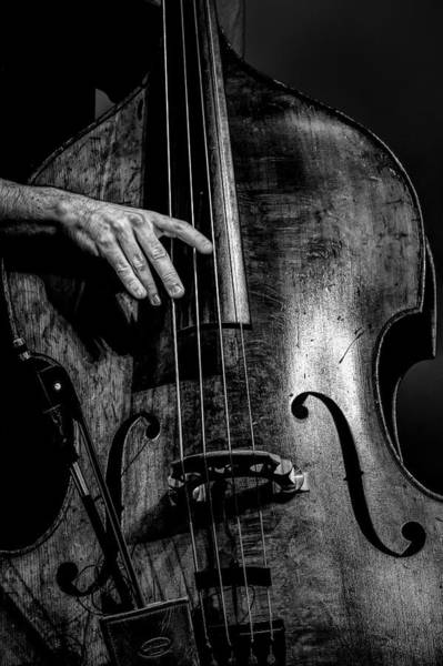 Strum Wall Art - Photograph - Daddy Played Bass by Mike Lang
