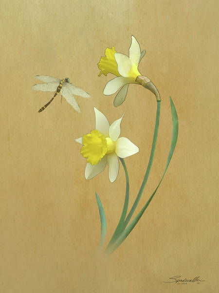 Wall Art - Digital Art - Daffodils And Dragonfly by M Spadecaller
