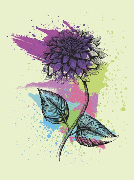 Cut-out Digital Art - Dahlia by Mecaleha