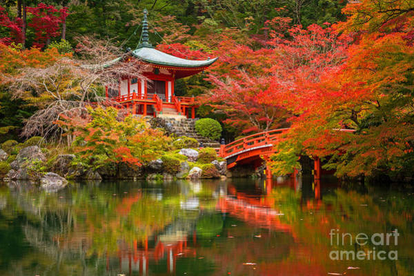 Orient Photograph - Daigo-ji Temple With Colorful Maple by Patryk Kosmider