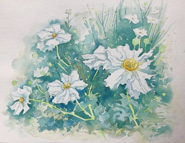 Wall Art - Painting - Matilija Poppies by Luisa Millicent