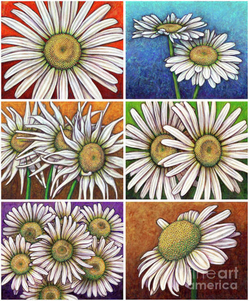 Painting - Daisy Garden Patchwork by Amy E Fraser