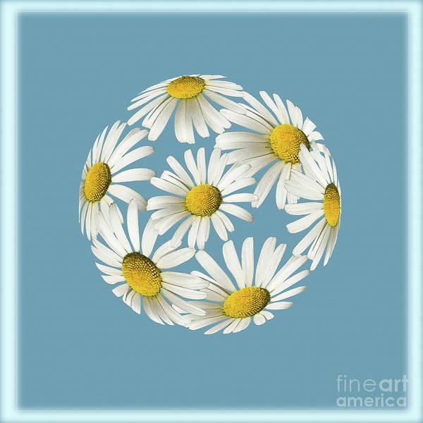 Digital Art - Daisy Moon by Liz Alderdice