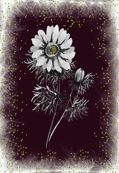 Mixed Media - Daisy Sparkle by Rosalie Scanlon