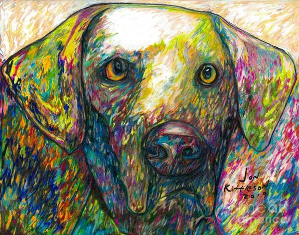 Drawing - Daisy The Dog by Jon Kittleson