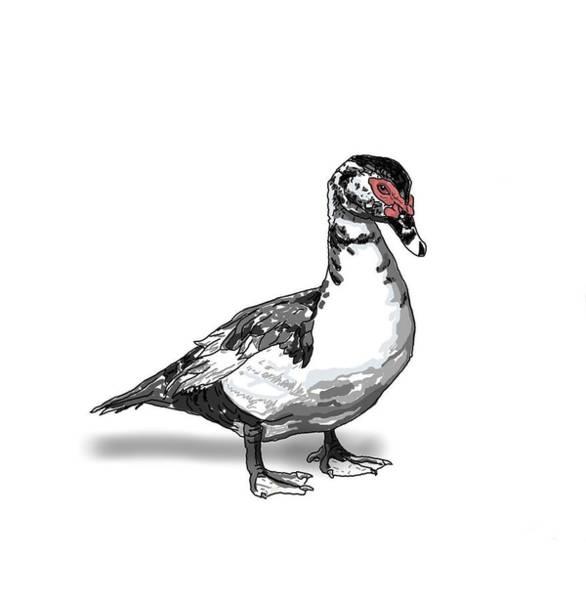 Digital Art - Daisy The Duck by Joan Stratton