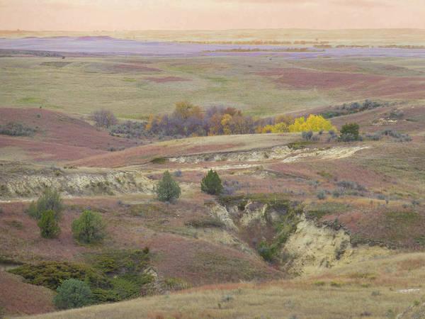 Photograph - Dakota Grassland Fantasy by Cris Fulton