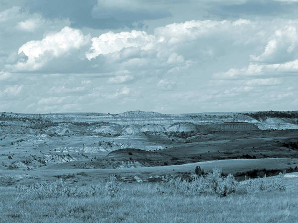 Photograph - Dakota Grassland Shadows by Cris Fulton