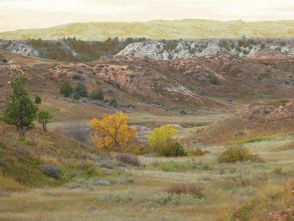 Photograph - Dakota West September Reverie by Cris Fulton