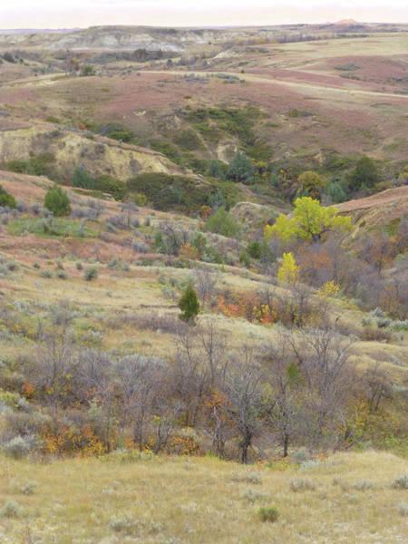 Photograph - Dakota West Treasure Chest by Cris Fulton
