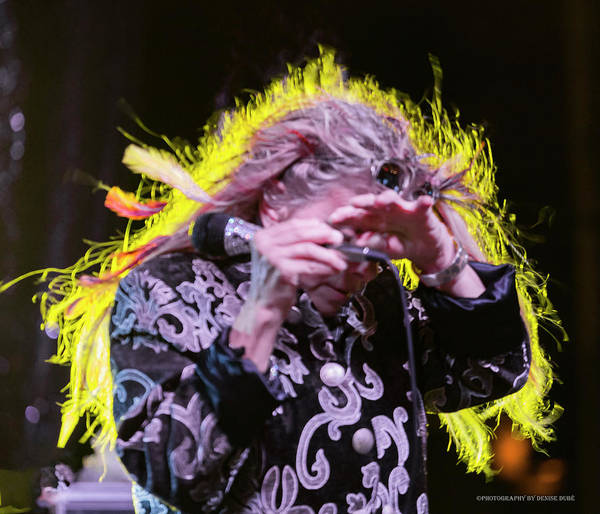 Photograph - Dale Bozzio 6 by Denise Dube
