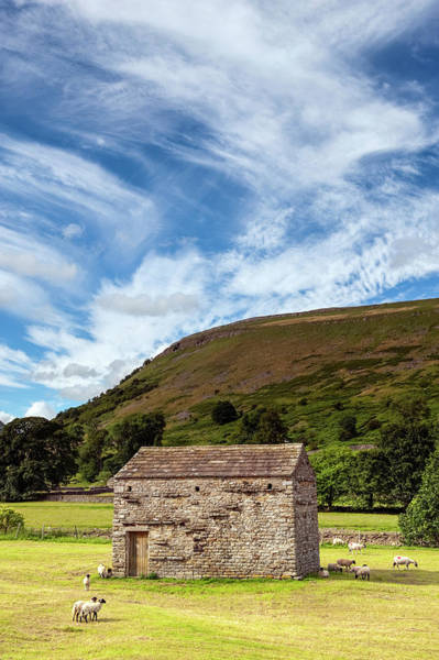 Wall Art - Photograph - Dales Barn In Newly Harvested Meadow by Uig