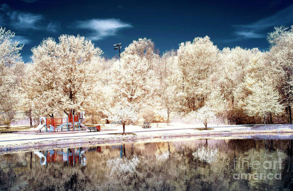 Wall Art - Photograph - Daley's Pond Infrared by John Rizzuto