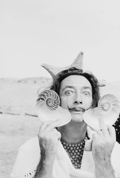 Photograph - Dali With Shells by Charles Hewitt